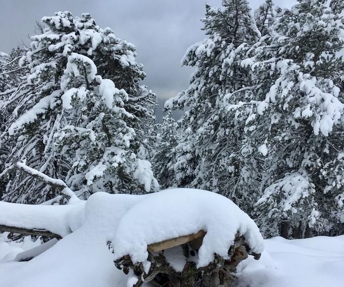 Nieve en el Valle de Ordesa. Fotografía realizada por Javier Lardiés en Octubre de 2018.