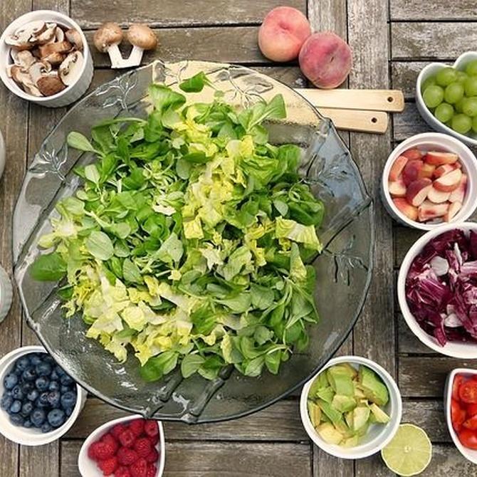 Guía básica para la alimentación de nuestros mayores en verano