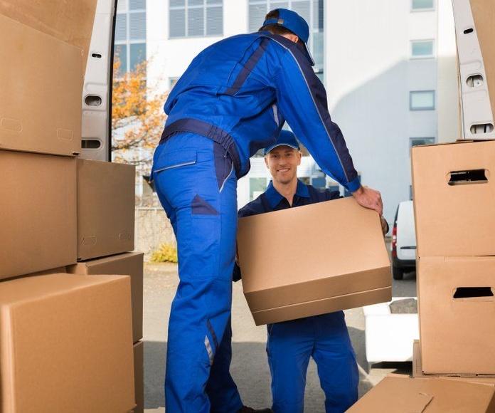Embalajes Especiales: Servicios de Transportes y Mudanzas Antony