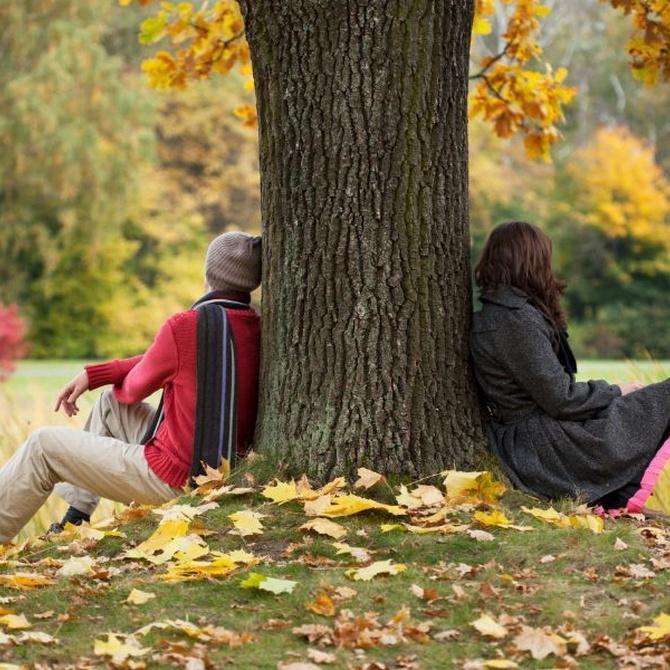 ¿Conoces las diferencias entre separación y divorcio?