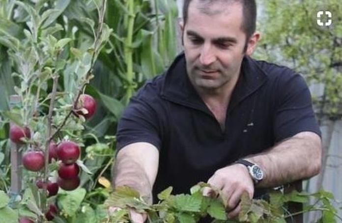 Australiano produce 250 kilos de comida en 60 metros cuadrados