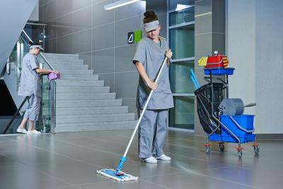 Todos los productos y servicios de Limpieza (empresas): El Crisol