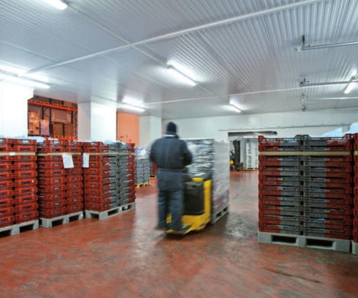 Logística y distribución: Servicios de Transports J. Prada