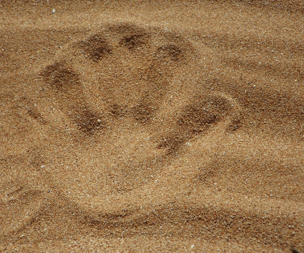 El chorro de arena