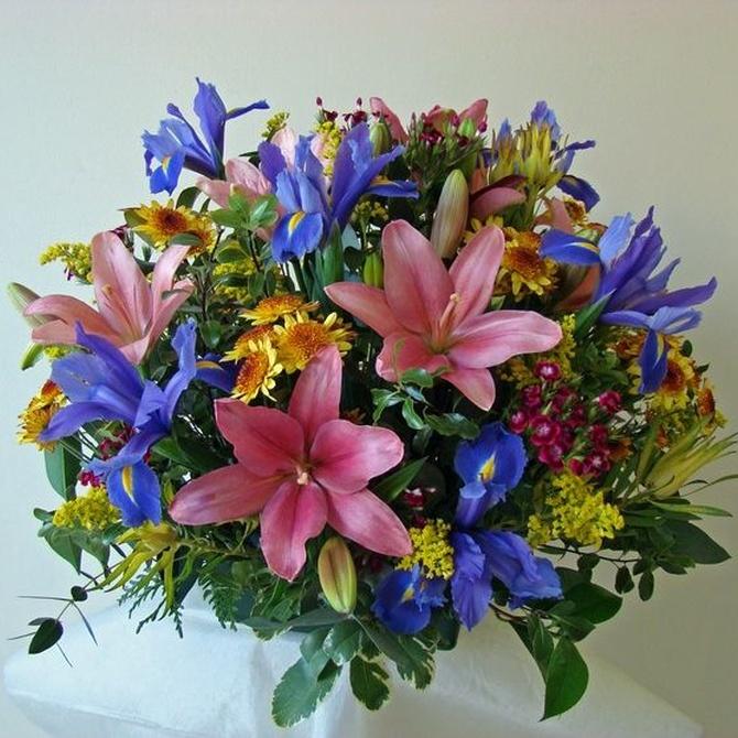 ¿Por qué regalar flores?