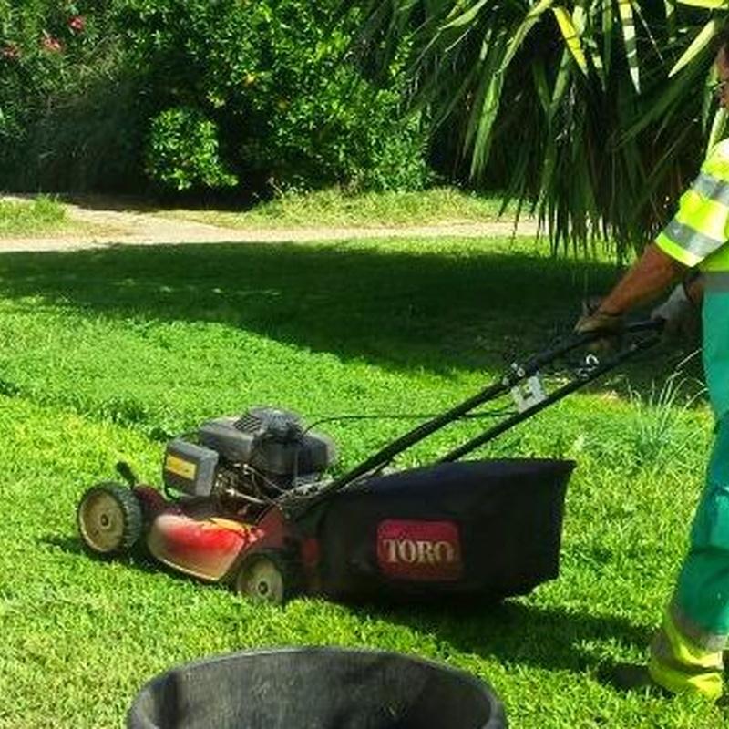 Conservaciones de jardines y comunidades