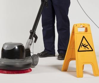 Limpiezas concertadas: Servicios de Servineteja