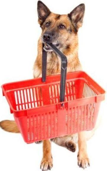 Asesoramiento en nutrición para mascotas en Hortaleza - Canillas