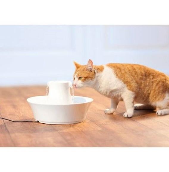 fuente para gatos y perros Drinkwell