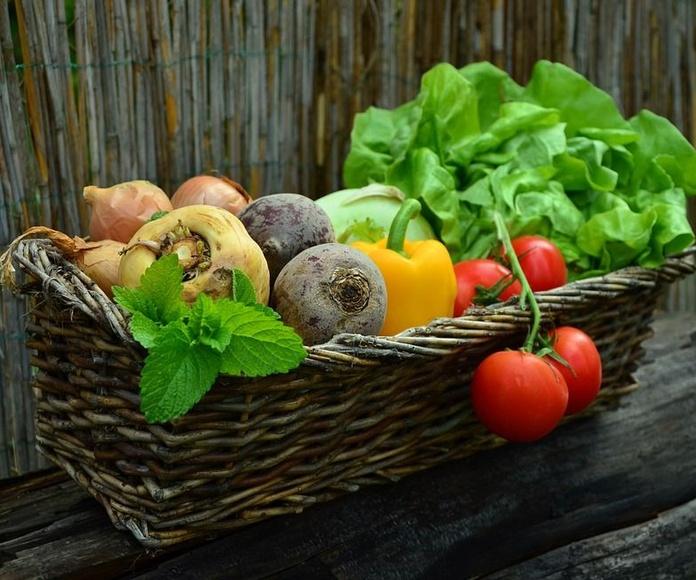 Nuestras cestas: Productos de La Huerta de Leo