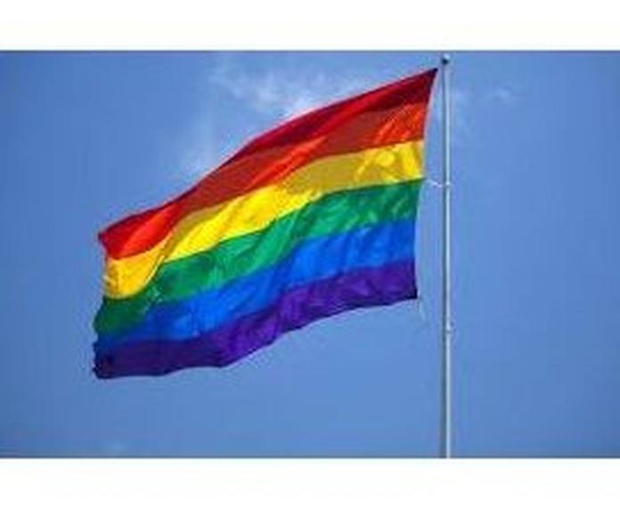 ORIENTACION SEXUAL - HOMOSEXUALIDAD