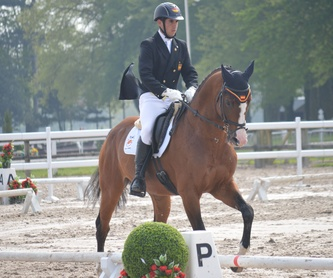 Escuela de equitación: Servicios de Club Hípico Lira Cubero