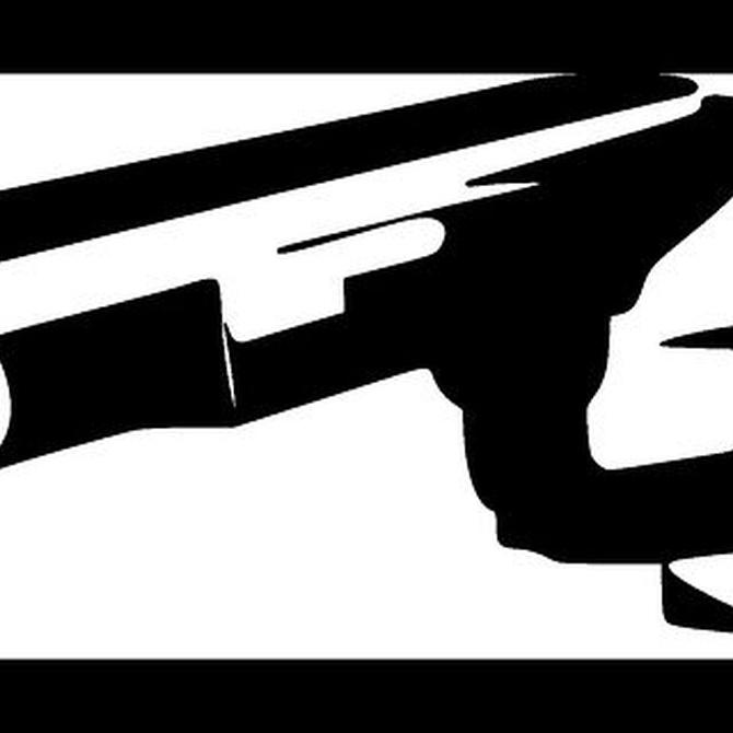 Funciones principales de los vigilantes de seguridad (II)
