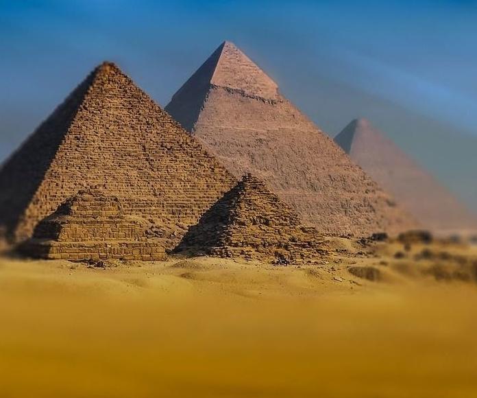 Hayan por primera vez en Egipto un huerto funerario
