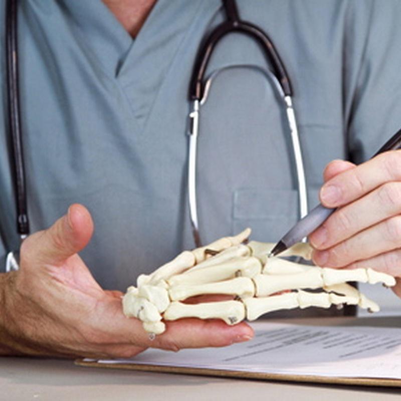 Traumatología: Especialidades de Portumedic
