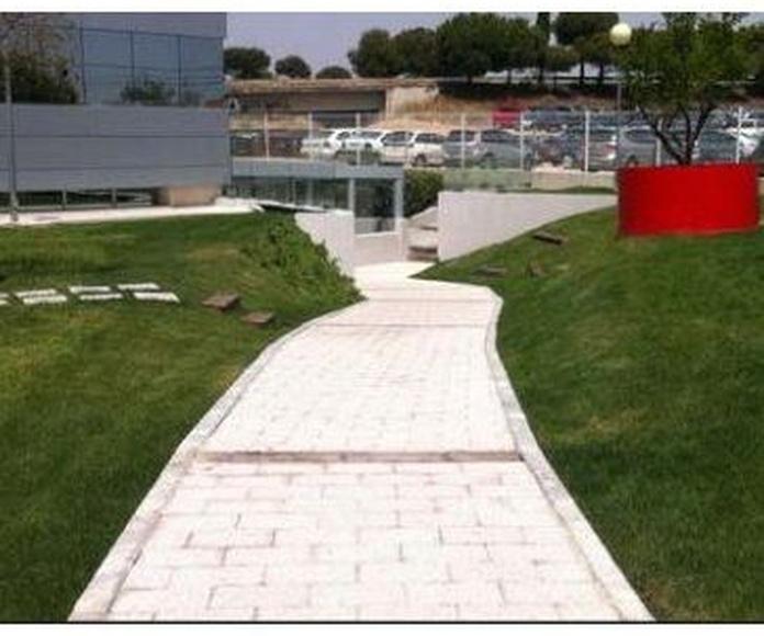 Pavimentaciones: Nuestros Servicios de Técnicos en Firmes y Obras