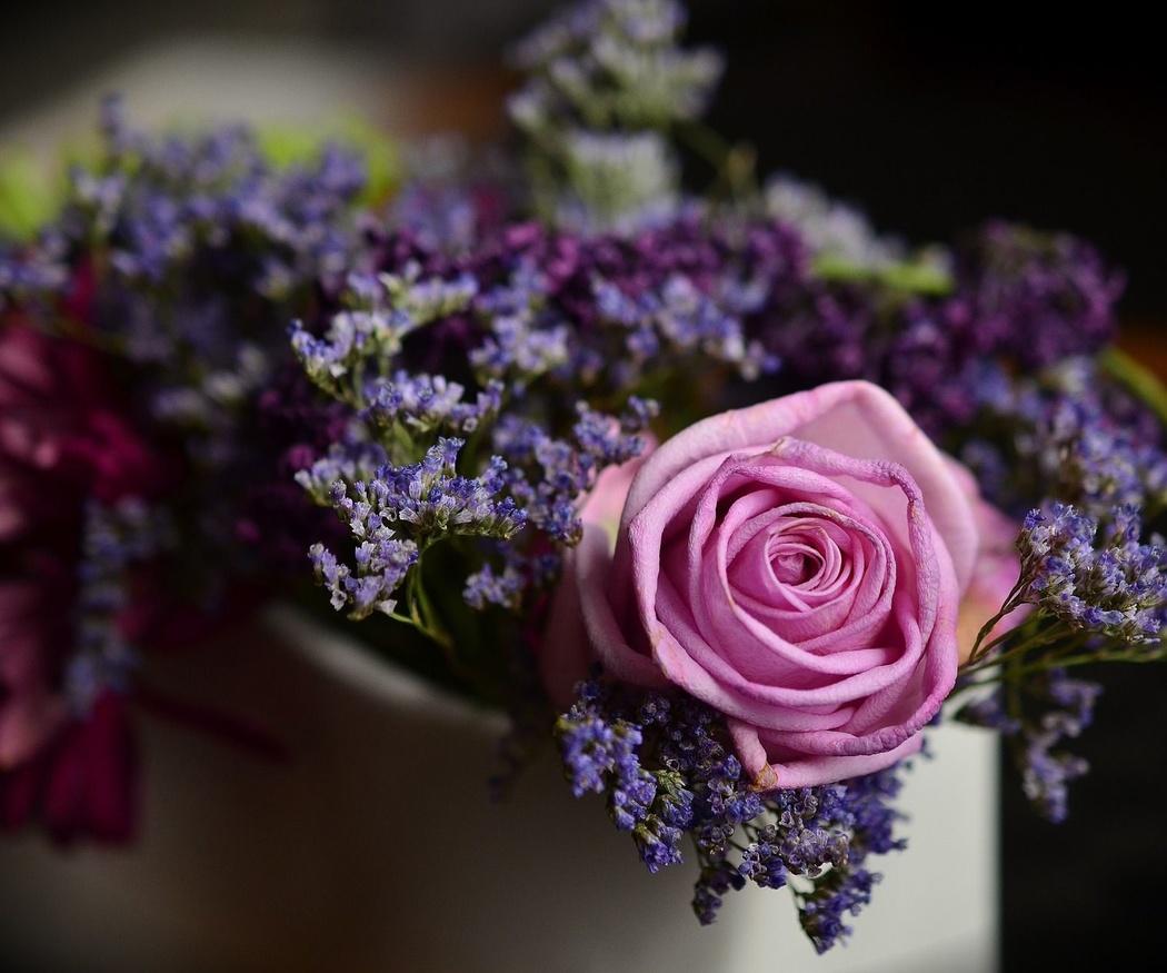 Flores bonitas: donde sea y cuando quieras