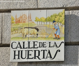 Hostal barato zona Huertas , Madrid