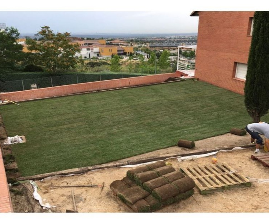 ¿Césped natural o artificial para el jardín?