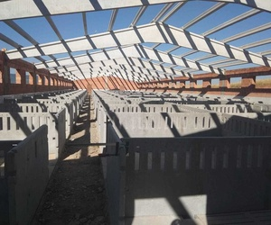 Montaje de separadores en Añavieja(Soria)