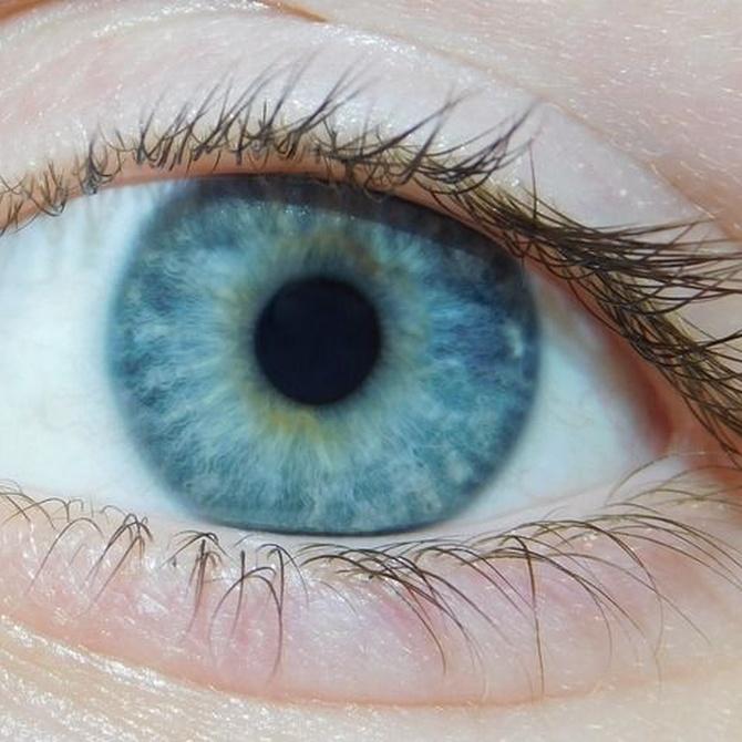Tipos de lentes de contacto y ventajas que supone su uso