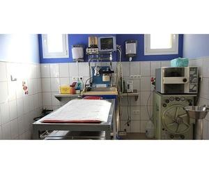 Instalaciones de la clínica veterinaria