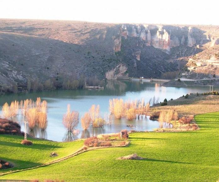El pantano de Linares