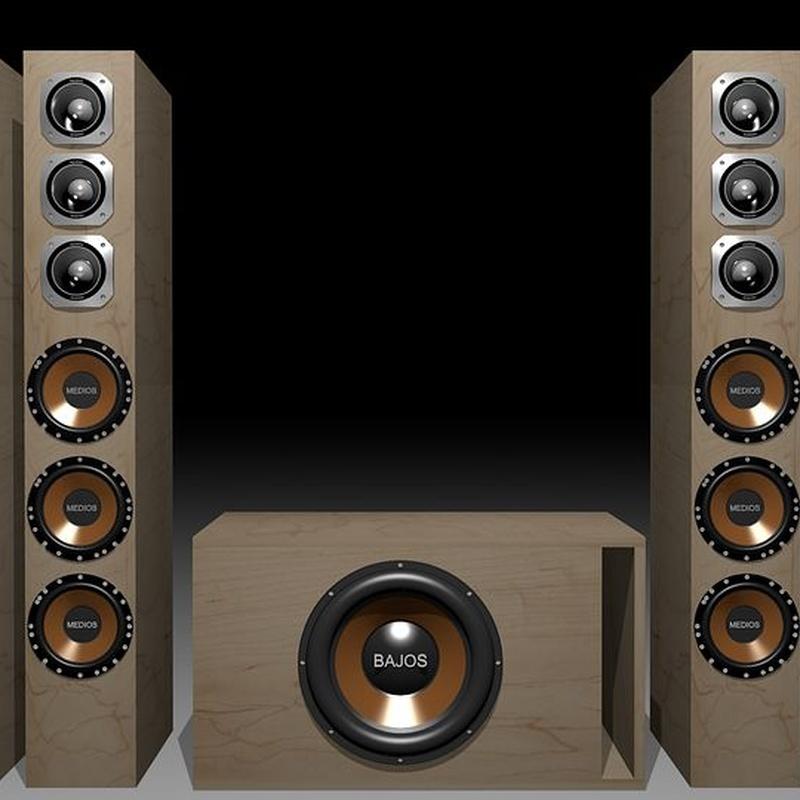Venta de equipos de sonido: Servicios de Óscar Molowny Sonido Iluminación