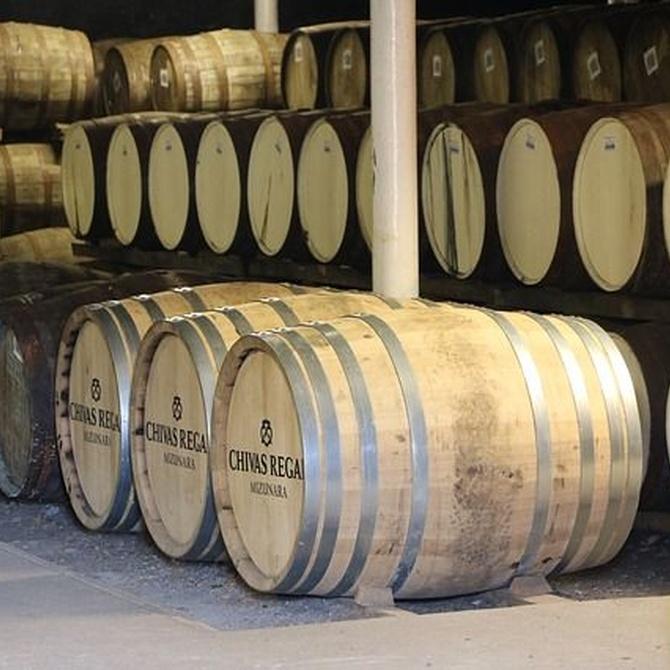 ¿Cómo guardar el vino en el trastero?
