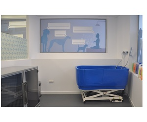 Todos los productos y servicios de Veterinarios: La Chopera Hospital Veterinario