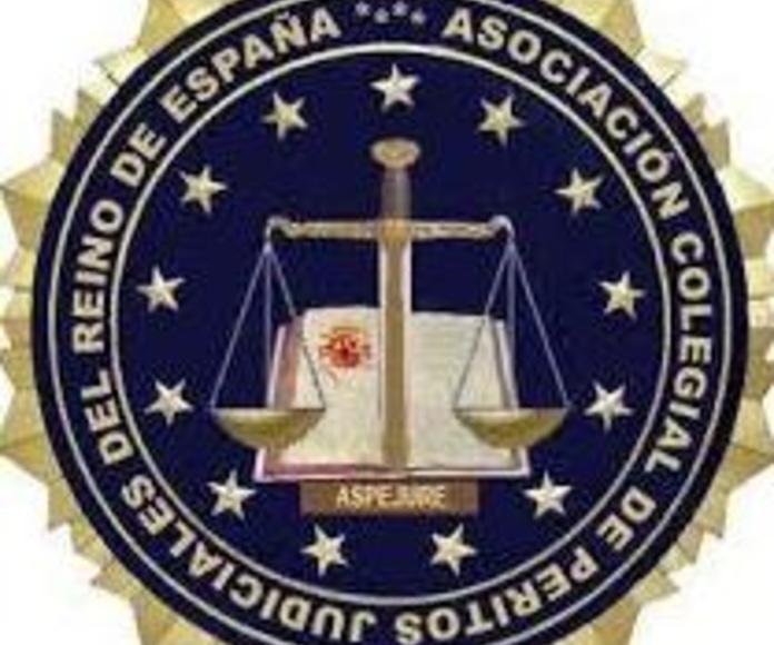Perito Judicial Colegiado: Servicios de Columba Detectives