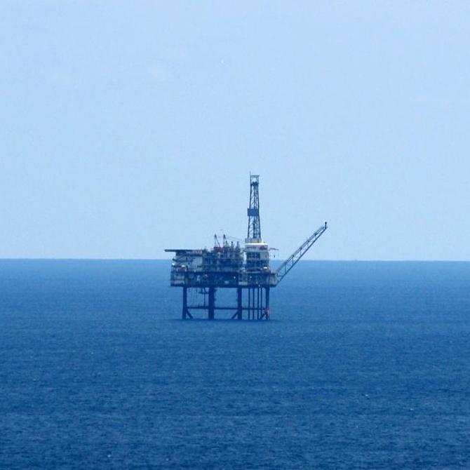 ¿Cómo se originó el gasóleo y el petróleo?