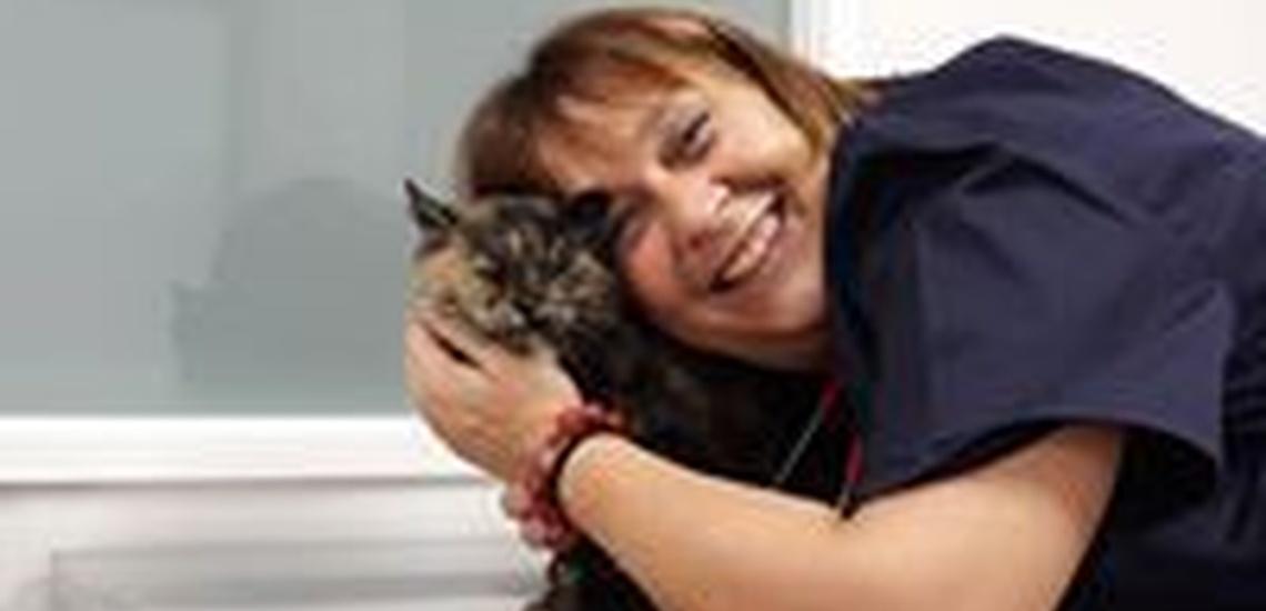 Clínica veterinaria en Caldes de Montbui los mejores profesionales