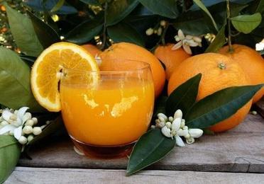 Naranjas de zumo pequeño 10 kg