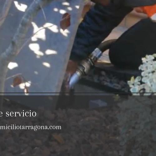Gasóleo en Camarles | Juan Serral Gombau. Distribuidor Petro Nieves