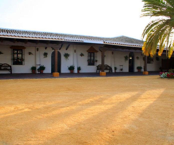 Instalaciones: Servicios de Hacienda Mendieta