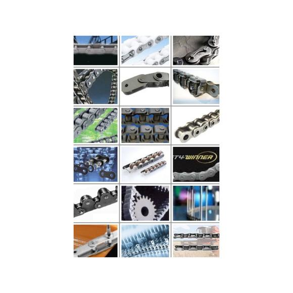 Cadenas: Productos de Rodamientos del Segura