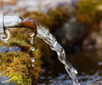Proceso de alimentos y bebidas: Tratamiento de aguas de SOB Distribuidores