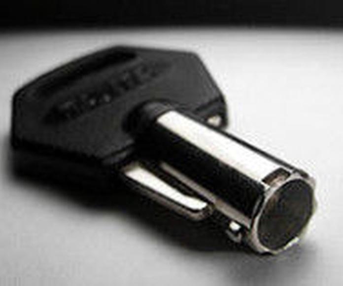 Tubular: Servicios de Segurclau Cerraduras Online