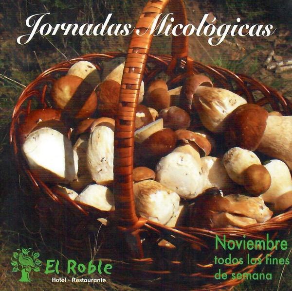 Jornadas Micológicas: Hotel y Restaurante de Hotel Restaurante Rural El Roble