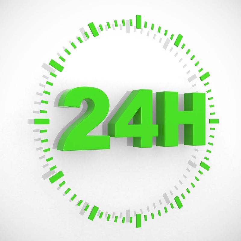 Urgencias 24 horas ( Tfno 654508830 ): Servicios de Clínica Veterinaria Rocafort