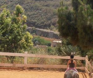 Mini paseos en pony /caballo