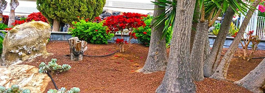 Césped artificial en Tenerife - Jardinería Tudor