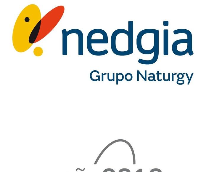 Empresa colaboradora de Nedgia Grupo Naturgy