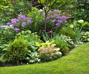 Jardinería en general
