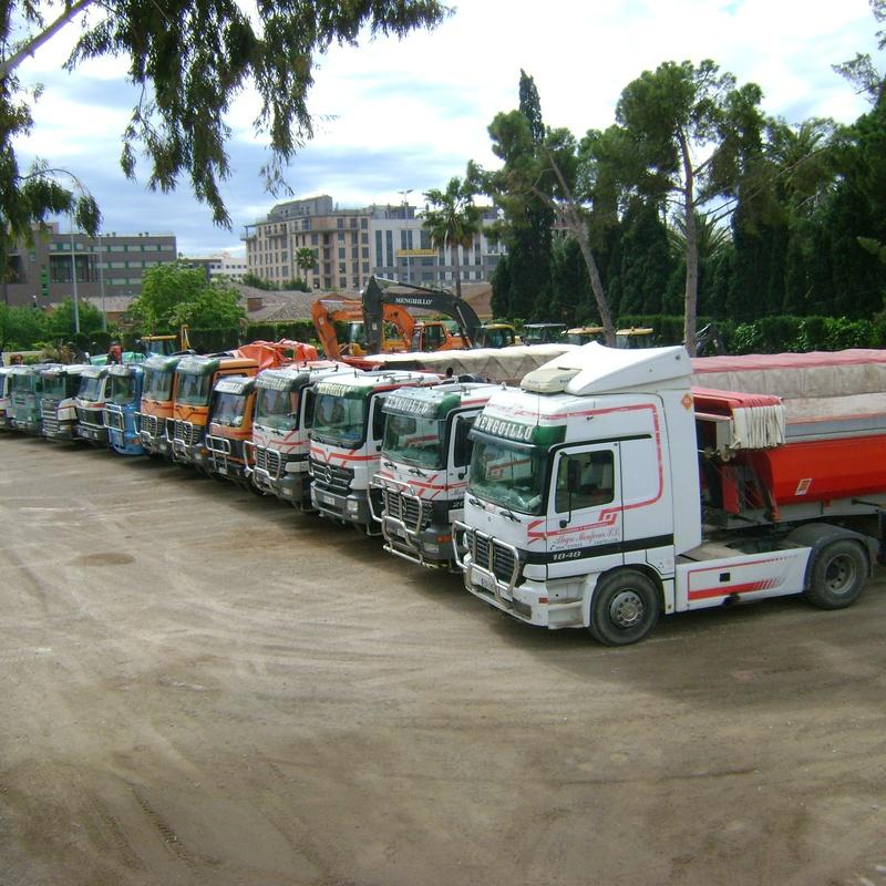 TRANSPORTE DE MATERIALES Y MERCANCÍAS EN VEHICULOS PESADOS: Servicios de Grupo Menguillo