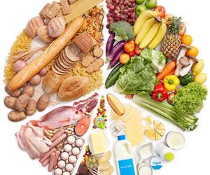 Nutrición humana y dietética en Arturo Soria
