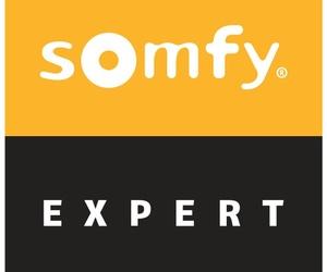 Motor para persianas Somfy