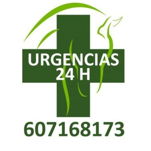 Urgencias 24 horas: Servicios  de Centro Veterinario Bienestar Animal Almerimar