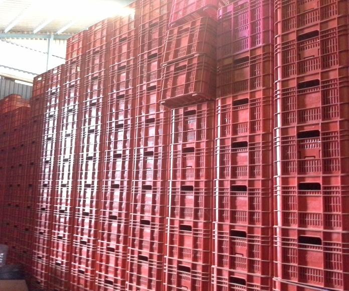 cajas de fruta de segunda mano en Albacete. en Chatarras clemente